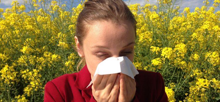 Freie Nase trotz Pollenflug